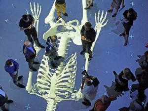 Human Bodies: The univers within/ © Ars Electronica